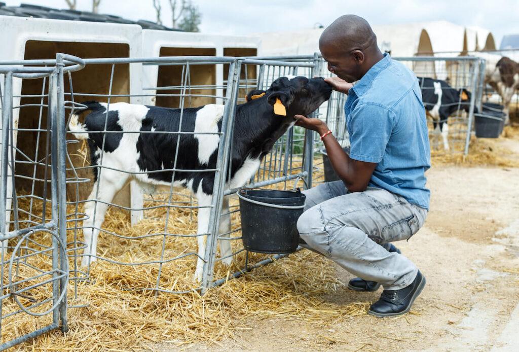 farmer with animal